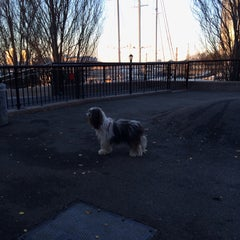 Photo taken at Sirius Dog Run by Sally Y. on 12/7/2013