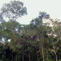 Photo taken at Waterfall, Forest Research Institute of Malaysia by Nazri R. on 6/1/2013
