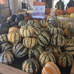 Photo taken at Great Country Farms by Victoria D. on 10/10/2015