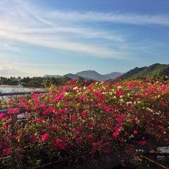 Photo taken at Champa Island by Olga K. on 1/29/2014
