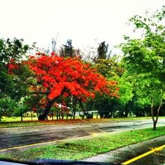 Photo taken at Parque Mirador Sur by Ana R. on 6/25/2013