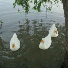 """Photo taken at Parque Ecológico """"Lago De Lirios"""" by Christopher K. on 3/18/2012"""