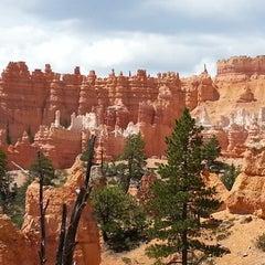 Photo taken at Best Western Zion Park Inn by Nicole B. on 8/10/2014