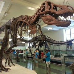 Photo taken at American Museum of Natural History by joy m. on 7/11/2013