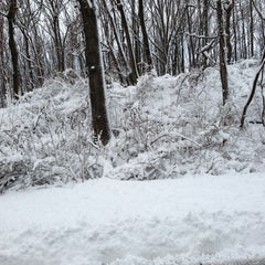 Photo taken at Wolfe's Pond Park by Johnathan S. on 2/9/2013