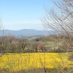 Photo taken at Rovine di Carsulae by Rita C. on 4/7/2013