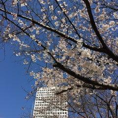 Photo taken at 中之島西公園 by Atsuhiro T. on 3/28/2015