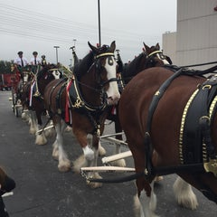 Photo taken at Anheuser-Busch by Ashley on 11/29/2015