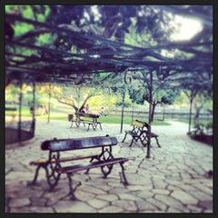 Photo taken at Jardim do Príncipe Real by João R. on 9/18/2013
