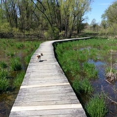 Photo taken at Lapham Peak Unit, Kettle Moraine State Forest by Kay C. on 5/13/2013