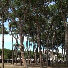 Photo taken at Forte Dei Marmi by Mitch L. on 4/7/2013