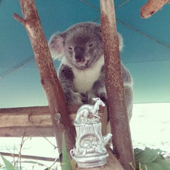 Photo taken at Australia Zoo by Alec D. on 5/28/2013