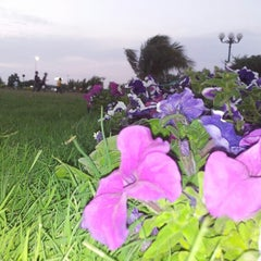 Photo taken at Khalid Shaheed Park by Talha M. on 3/29/2014
