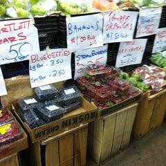 Photo taken at Doylestown Produce Outlet by Kristie Finnan on 3/12/2011