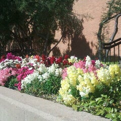 Photo taken at Richland College by Asma on 4/12/2013