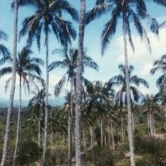 Photo taken at Caliraya Recreation Center & Resort by Jam G. on 5/7/2015