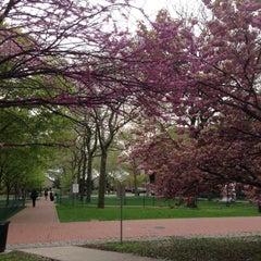 Photo taken at Pratt Institute by Patricia Dale L. on 4/30/2013
