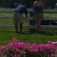 Photo taken at The Collins Creamery by Carolyn B. on 6/23/2013