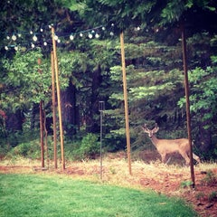Photo taken at Black Bear Inn by Krista G. on 7/22/2014