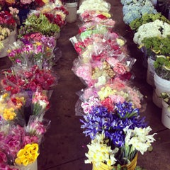 Photo taken at SF Flower Mart by Lauren L. on 3/23/2013
