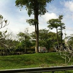 Photo taken at Mandai Orchid Garden by Derek L. on 1/4/2013
