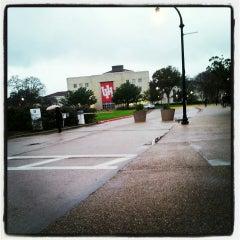 Photo taken at University of Houston by Iris S. on 4/4/2013