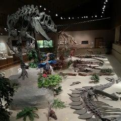 Photo taken at Dakota Dinosaur Museum by Nick G. on 6/5/2013