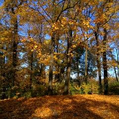 Photo taken at Arkādijas parks by Atis G. on 10/13/2013