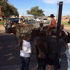 Photo taken at Stockyards Arena & Stables by Andrea H. on 2/23/2014