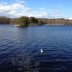 Photo taken at Hellasgården by Nuno C. on 4/28/2013