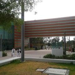 Photo taken at Universidad del Valle de México (UVM Campus Zapopan) by Miguel A. on 5/14/2013