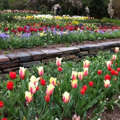 Photo taken at Sarah P. Duke Gardens by Ha Linh on 4/16/2013