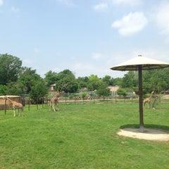 Photo taken at Tulsa Zoo by Adam C. on 5/19/2013
