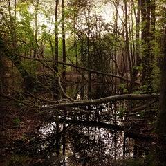 Photo taken at Washington Lake Park by Evan K. on 5/5/2013