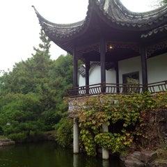 Photo taken at Chinese Scholars' Garden by Anna C. on 10/7/2012