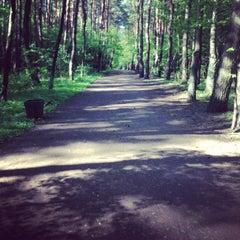 Photo taken at Rezerwat przyrody Żurawiniec by Renata H. on 5/15/2013