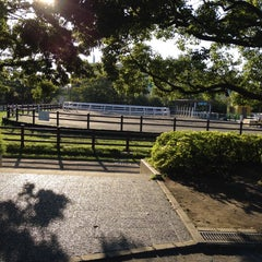 Photo taken at なぎさポニーランド by kiyo C. on 9/12/2015