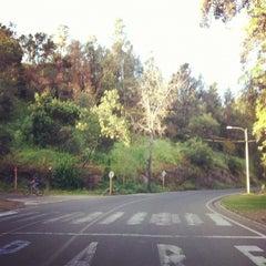 Photo taken at Parque Metropolitano de Santiago by Ariel L. on 11/2/2012