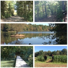 Photo taken at Anne Springs Close Greenway by Jessica S. on 10/16/2012