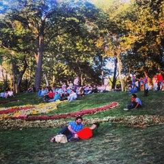 Photo taken at Taksim Gezi Parkı by Ahmet A. on 7/14/2013