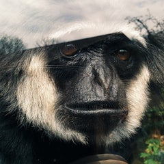 Photo taken at Monkey World - Ape Rescue Centre by Peter on 4/5/2015