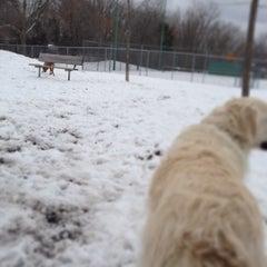 Photo taken at Bassett Creek Dog Park by James J. on 4/13/2013