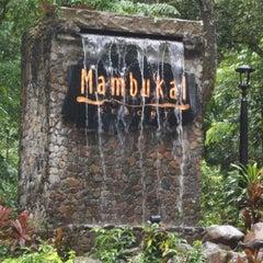 Photo taken at Mambucal Mountain Resort by K N. on 6/16/2013