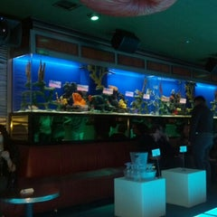Photo taken at Adega Grill by Johnathan G. on 12/8/2012