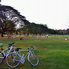 รูปภาพถ่ายที่ สวนวชิรเบญจทัศ (สวนรถไฟ) Vachirabenjatas Park (Rot Fai Park) โดย Chanmonthon M. เมื่อ 1/6/2013