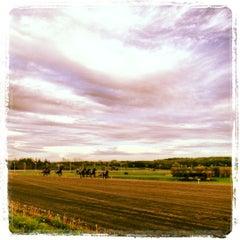 Photo taken at Vernon Downs Casino by Braheem K. on 6/24/2012