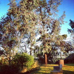 Photo taken at Culver City Park by Jessica Y. on 10/26/2012