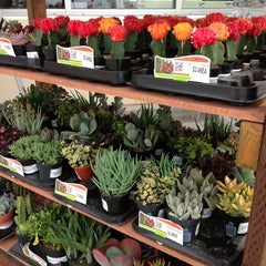Photo taken at The Home Depot by Gemma on 3/14/2013