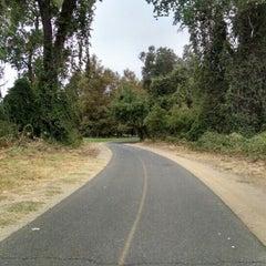 American River Bike Trail Arden Arcade Sacramento Ca