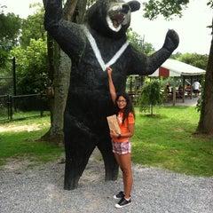 Photo taken at Natural Bridge Zoo by Danielle Z. on 8/16/2013